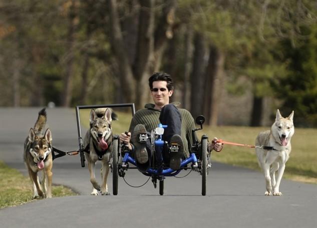 Trike n Dogs 1