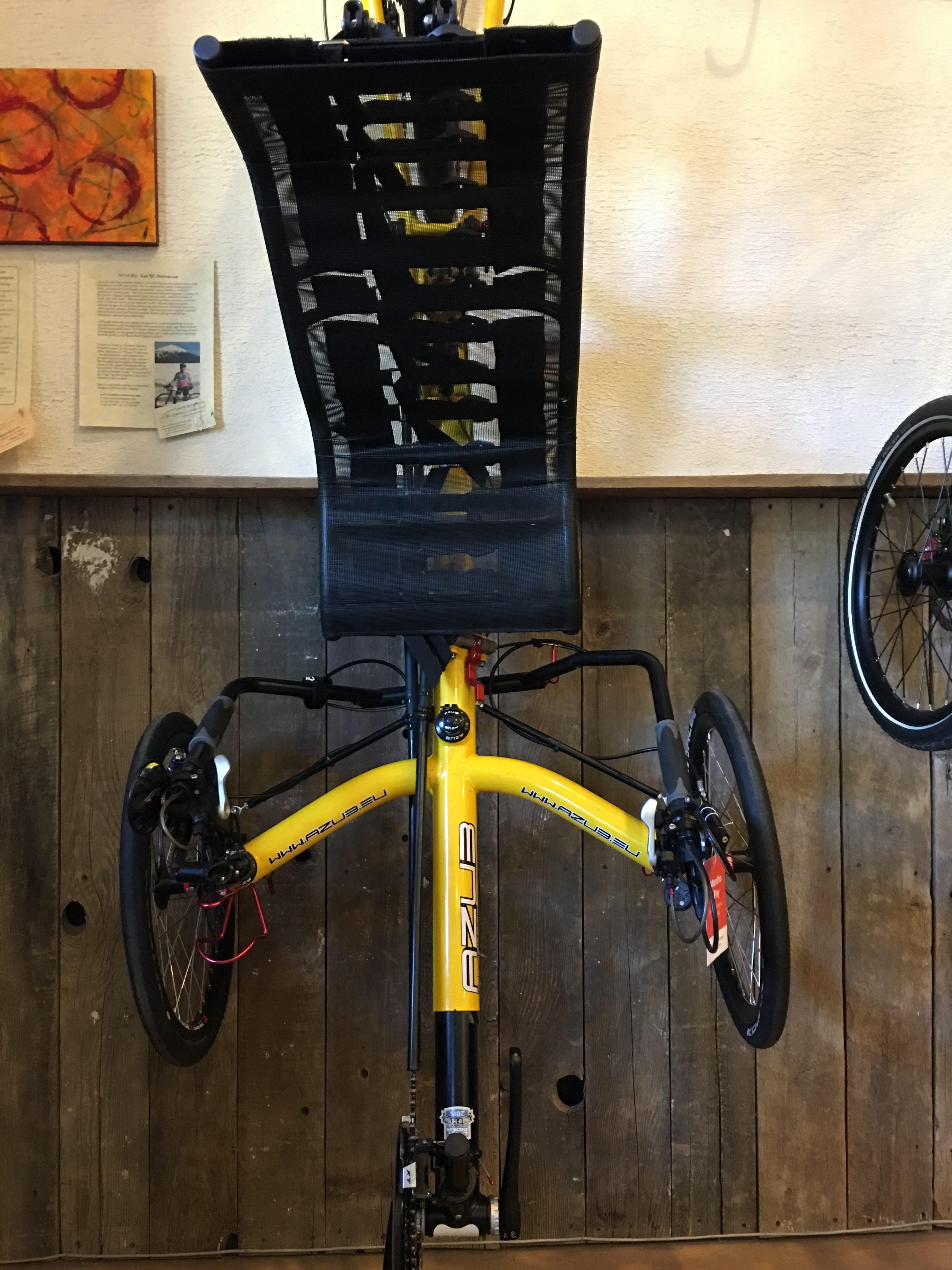 Backcountry Recumbent Cycles Bacchetta Corsa A65 Used